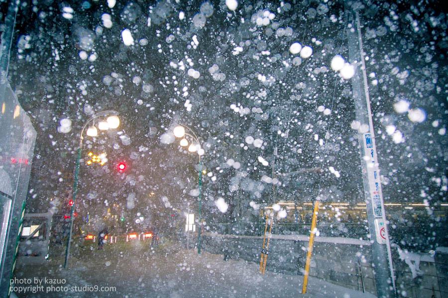 大雪スナップ(夜)