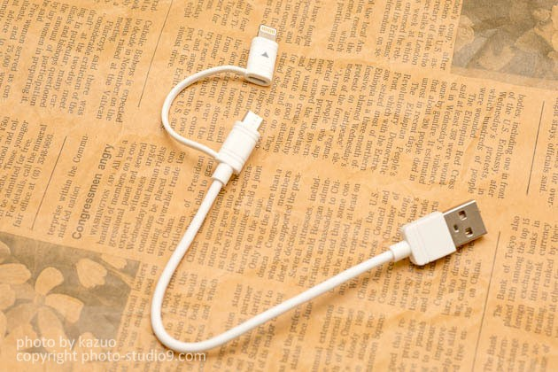 GREEN HOUSEのLightning/microUSB両対応ケーブルGH-ALTMBA15-WH